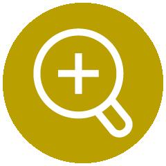 Icon: Präzise Diagnostik